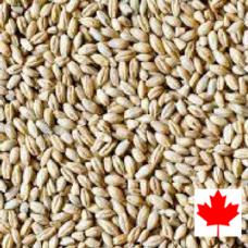 Barley, Pearl 11.34 KG