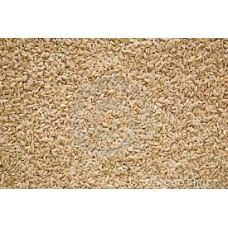 Golden Rose Medium Grain Brown Rice 11.34 KG